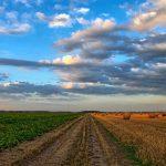terre agricole investir